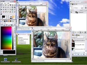 Copie d'écran de Gimp